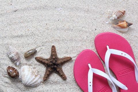 貝やヒトデと一緒に置いてある砂浜の上のビーチサンダル