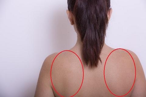 肩甲骨の位置を説明している女性の後ろ姿