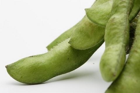 たくさんの栄養がぎっしり詰まった枝豆のアップ