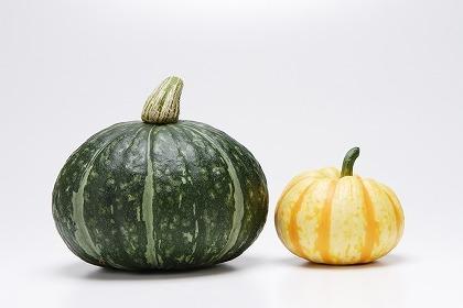 2つ並んだ西洋かぼちゃと白かぼちゃ