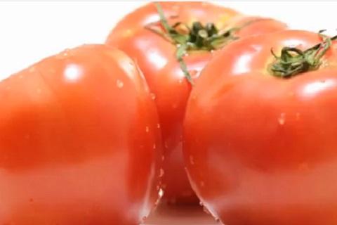 水も滴る新鮮で健康的なトマト
