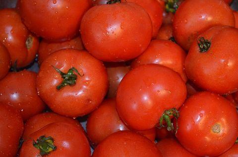 いっぱいに積みあがったトマト