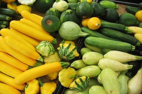 さまざまな種類が存在する瓜